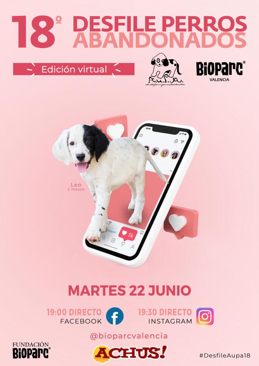Mañana martes 22 de junio, edición virtual del Desfile de perros abandonados A.U.P.A y Bioparc Valencia